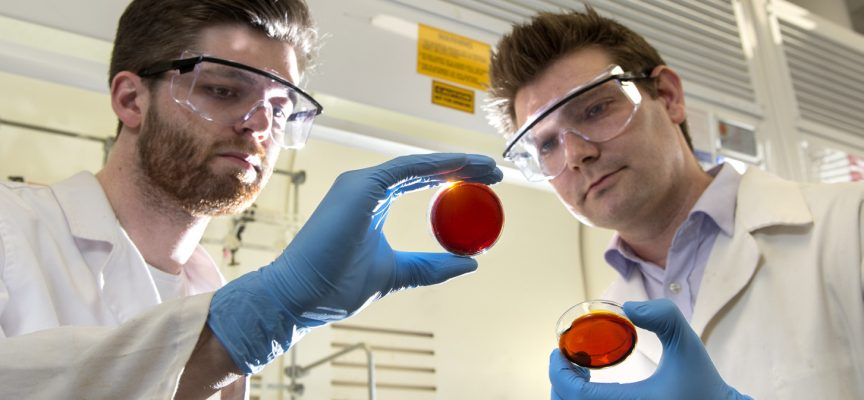 Researchers develop Mercury removal technique